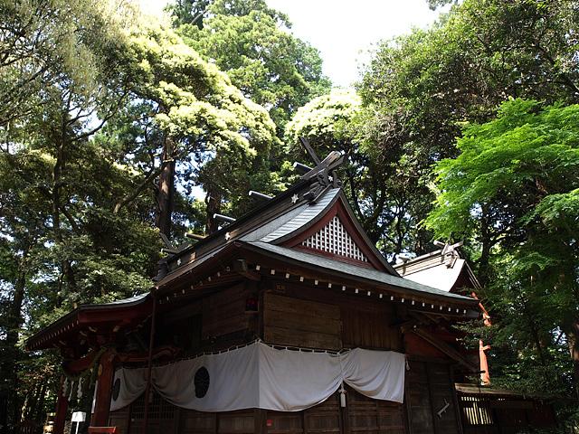 麻賀多神社(台方社・船形社)・印旛沼 (5/16)_b0006870_12222431.jpg