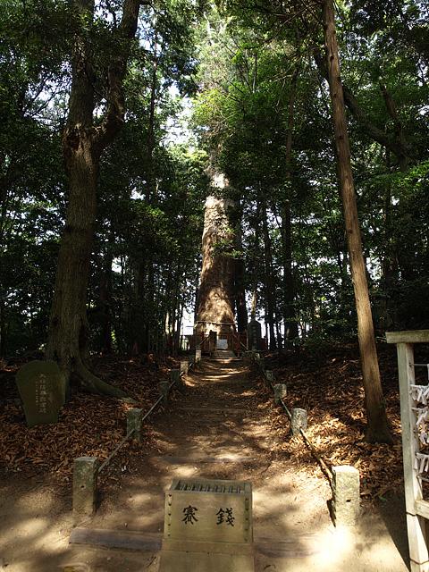 麻賀多神社(台方社・船形社)・印旛沼 (5/16)_b0006870_12223783.jpg