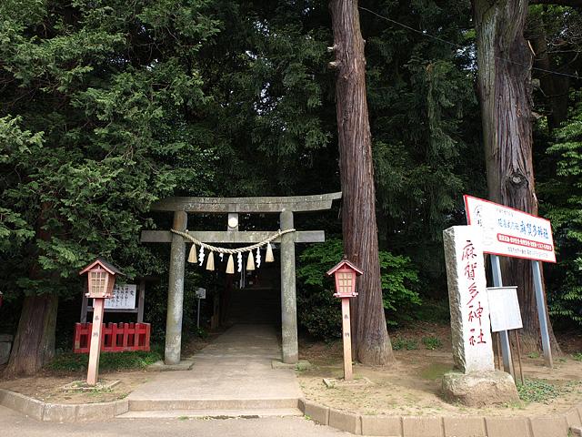 麻賀多神社(台方社・船形社)・印旛沼 (5/16)_b0006870_1222721.jpg