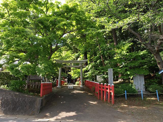 麻賀多神社(台方社・船形社)・印旛沼 (5/16)_b0006870_1223433.jpg