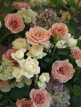 オークリーフ(シュナーベルとスイートオールドのスタンド花)_f0049672_1632736.jpg