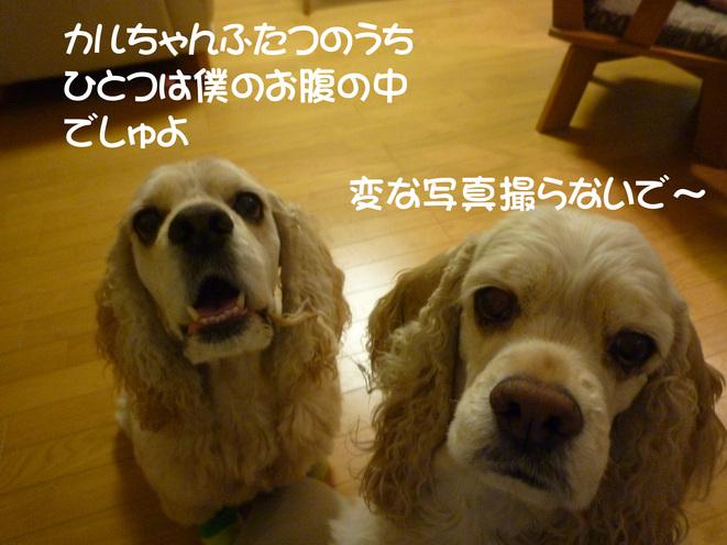 f0218182_1653367.jpg