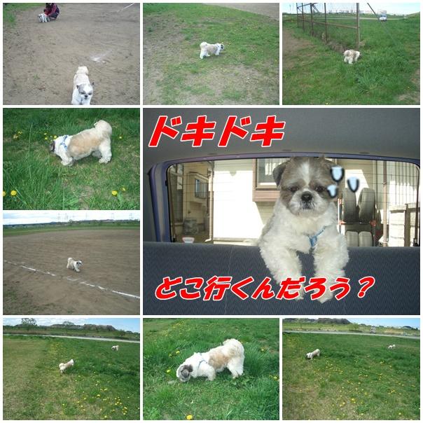 b0124693_21435966.jpg