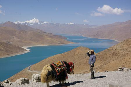 チベットの旅  Day  6 ラサからギャンツェへ_e0114020_2031692.jpg