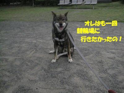 f0143123_20131746.jpg