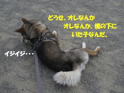 f0143123_202571.jpg