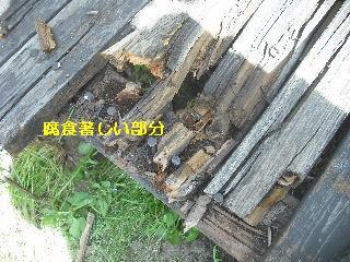 濡れ縁解体作業_f0031037_18402560.jpg