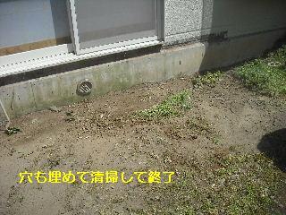 濡れ縁解体作業_f0031037_18411379.jpg