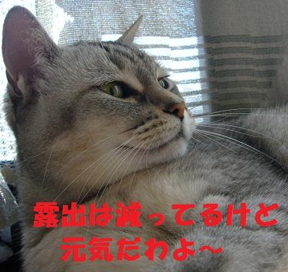 f0002743_13203649.jpg