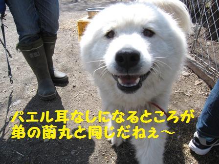 f0212597_950178.jpg