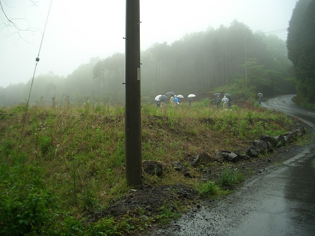 富士山麓の土採取現場を視察_f0141310_23565817.jpg