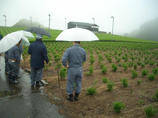 富士山麓の土採取現場を視察_f0141310_23575356.jpg