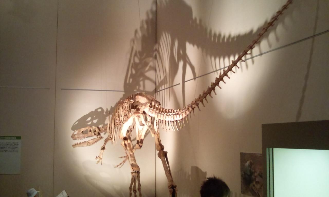 大恐竜展・・・_f0213410_15415587.jpg