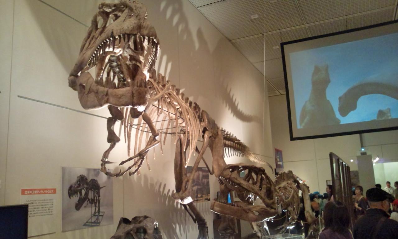 大恐竜展・・・_f0213410_15482577.jpg
