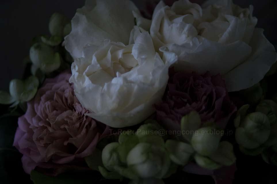 花を愛でる_e0132518_2042835.jpg