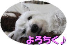 f0084422_2217477.jpg