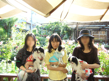 薔薇園_a0111125_16561813.jpg