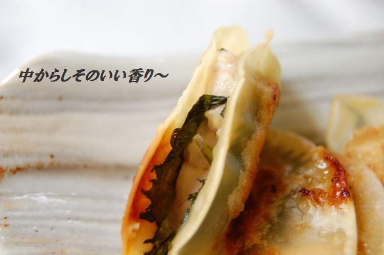 超簡単!半月☆鶏しそ餃子_d0104926_31468.jpg