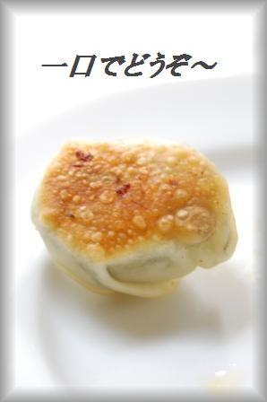 超簡単!半月☆鶏しそ餃子_d0104926_322742.jpg