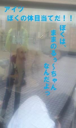 f0176830_12412035.jpg