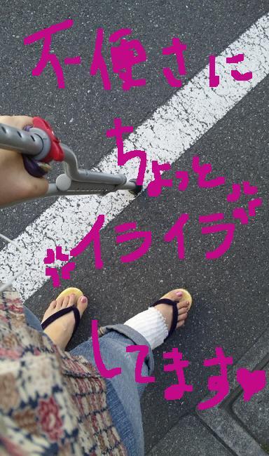 b0122260_623373.jpg