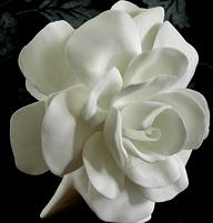 バラの素敵なフラワーベース_f0029571_932452.jpg