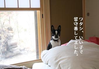 f0110199_16105260.jpg