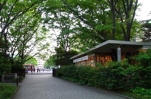 早稲田の杜の風景_c0192215_8461240.jpg
