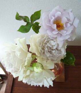 今日の薔薇_a0111125_196218.jpg