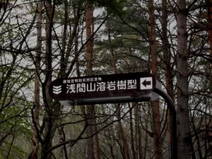 明日21日より吾妻林道が開通します。_e0120896_653919.jpg