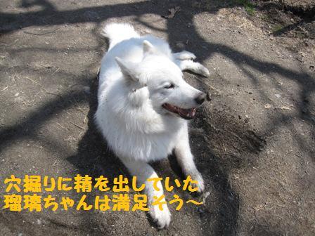 f0212597_13255488.jpg