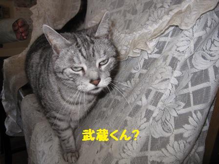 f0212597_8404237.jpg