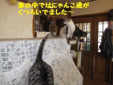 f0212597_840514.jpg