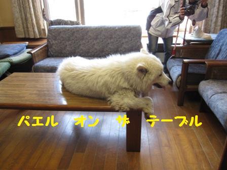 f0212597_8504294.jpg
