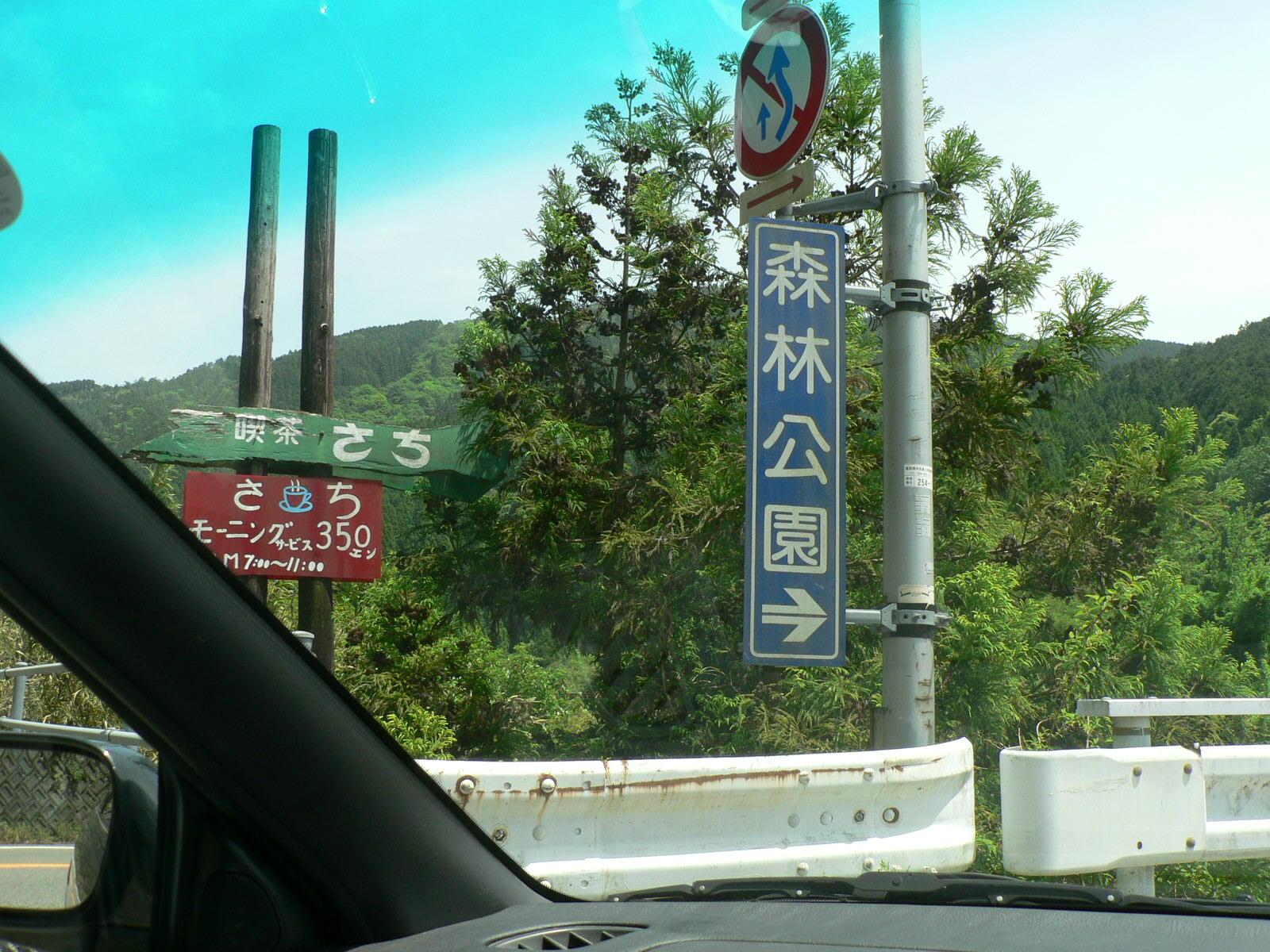 甫喜ヶ峰森林公園_e0146402_19173743.jpg