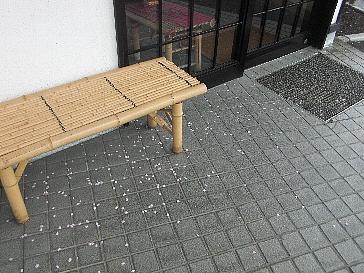 散った桜もこれまた風流_d0156608_16443477.jpg