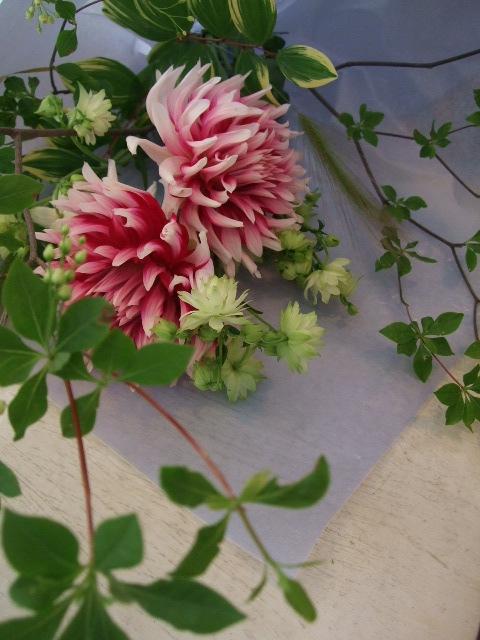 オークリーフ(母の日の花束)_f0049672_17314653.jpg