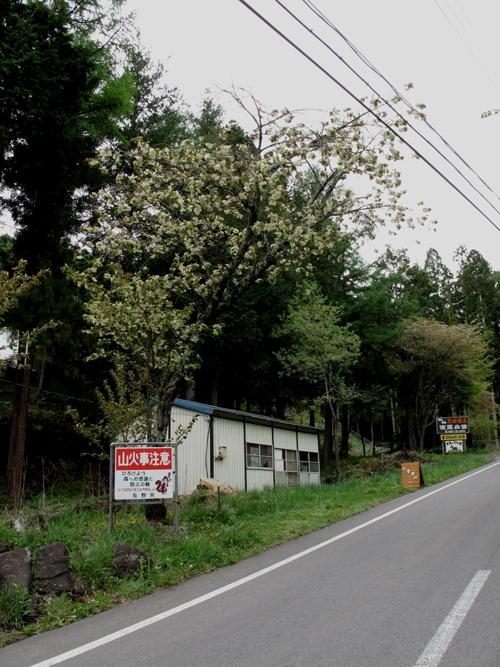 高峰温泉オリジナル手作りパン_e0120896_640771.jpg