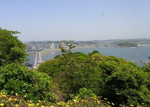 江の島サムエル・コッキング苑_c0192215_1226487.jpg