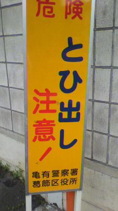 f0046622_2095892.jpg