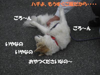 f0143123_20491497.jpg