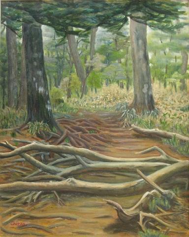 油彩    森の中の道_f0214527_1602320.jpg