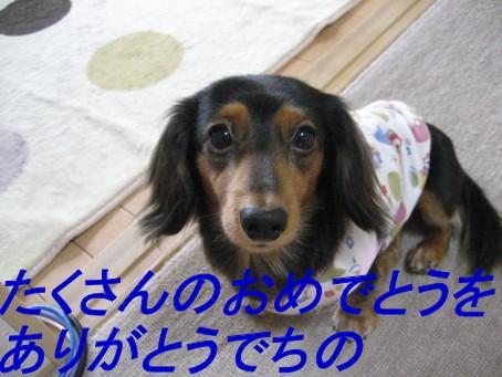 b0160052_1446457.jpg