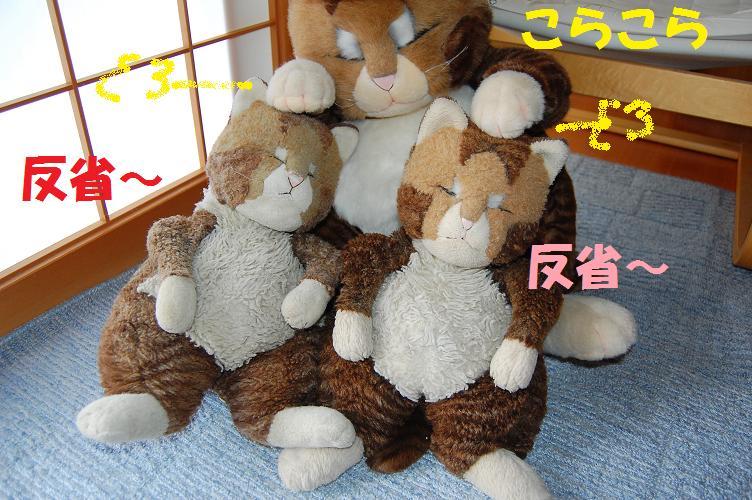 b0059978_16575820.jpg