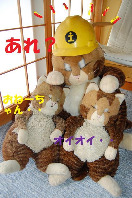b0059978_17243782.jpg