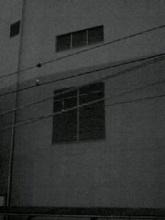 f0100480_19312193.jpg