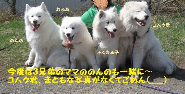 f0212597_13331887.jpg