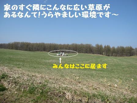 f0212597_1337966.jpg