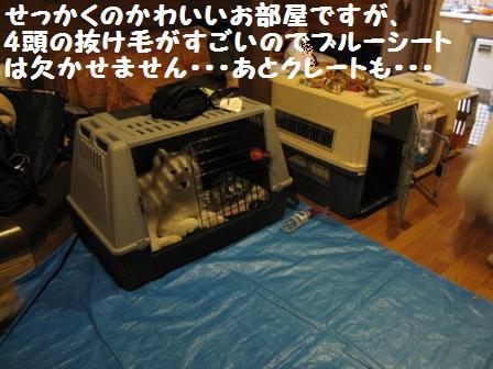 f0212597_13484347.jpg