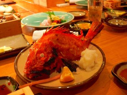 レストラン(日本-居酒屋)-東京(六本木)-田舎家 東店_c0153302_292913.jpg